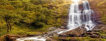 Refreshing Srinagar