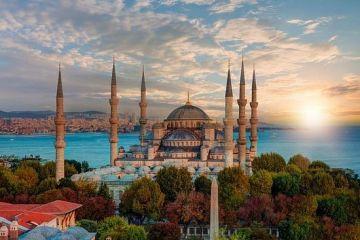 MYSTERIOUS FAIRY TURKEY
