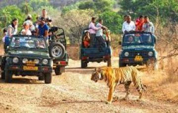 Rishikesh , Auli, Nainital & Jim Corbett Tour Package
