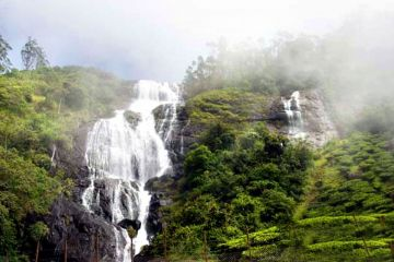 Beauteous Valley of Munnar & Thekaddy  3 Nights / 4 Days Tour Package