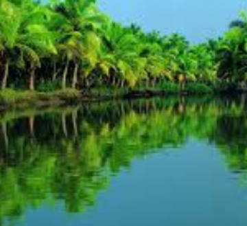 Alleppey Back Water Tour For 5N/6D