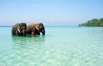 breaks to Andaman tour
