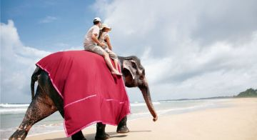 Stunning Sri Lanka - Packages