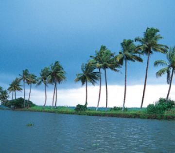 Kerala Off-beat Backwater Family Package For 5 Nights & 6 Days