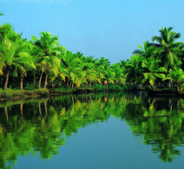 Kochi to Perriyar Family Package For 2N/3D