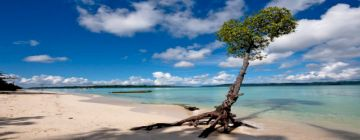 Explore Goa With Grand Island