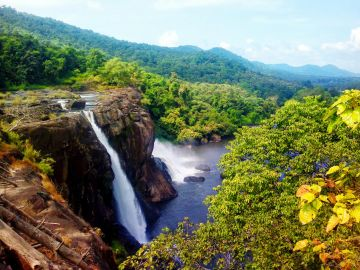 Special Family Munnar-Thekaddy Tour Package
