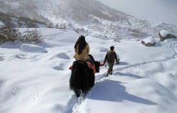 North Sikkim Haneymoon Tour Package 05 Night 06 Days
