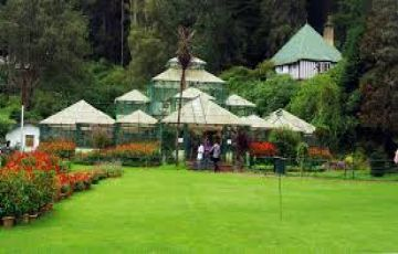 summer ooty mysore Coorg tour