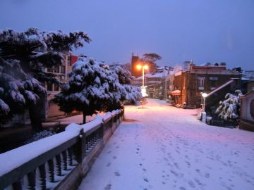 Hills Queen Shimla Package