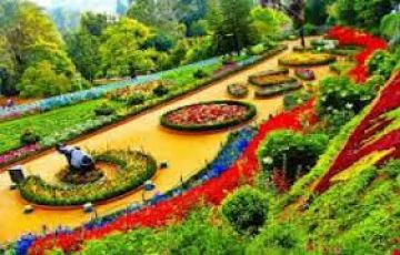 Ooty coorg tour Package 04 Nights 05 Days