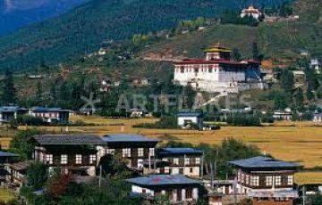 Bhutan Thunder Dragons