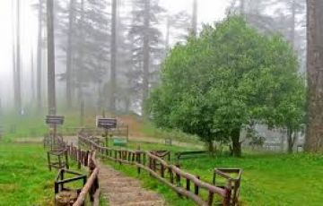 Mussoorie Tour Package from Delhi
