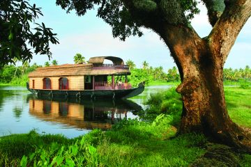 Kerala Tour2 night munnar & 1 night cochin