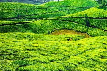 Memories with Heaven in kerala