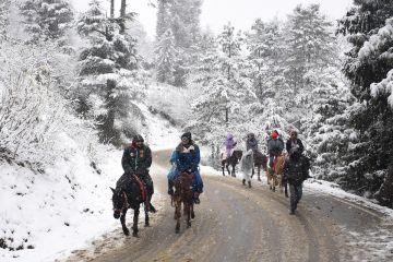 03 Days Kasol Kheerganga Adventure Package - Ex Delhi - Winter