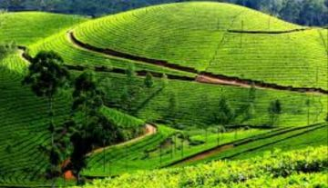 Exclusive & All Inclusive Tour - 08 Days Kerala & Kanyakumari