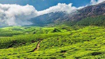 Weekend in Kerala