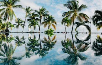 6 Nights & 7 Days Mauritius Honeymoon Tour Package