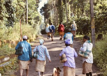 5nights & 6days Mysore-Ooty-Coorg Tour Package