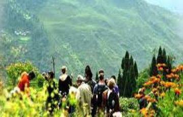 Darjeeling Cheap Tour