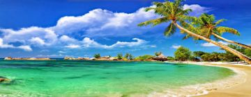 Romantic Goa Honeymoon Package Dolphin Spotting & Beach Walks