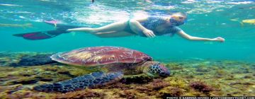 Port Blair Tour Package For 7 Nights 8 Days