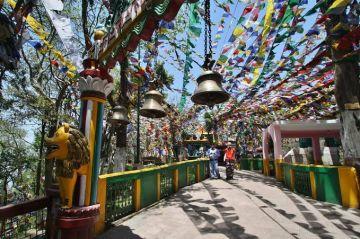 Group Darjeeling Tour Package