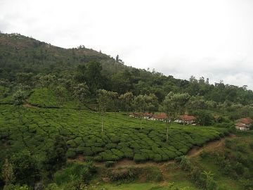 Coimbatore ooty 3 days tour package