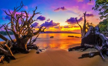 Cheapest Andaman Package