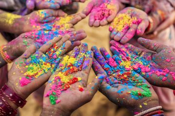 Holi Special  Celebration in Jim Corbett
