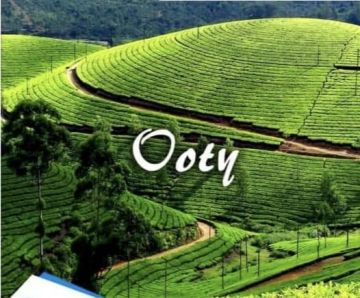 Amazing ooty 3 Night and 4 Days