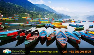 7 Night 8 Days Package Tour With Kathmandu NAGARKOT POKHARA and CHITAWAN