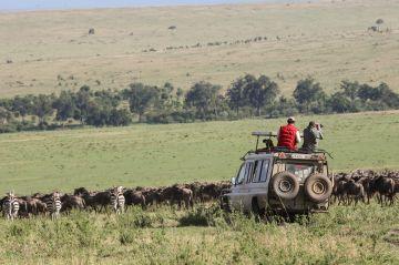 The great migration Tanzania