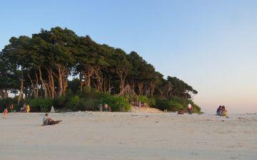 Andman & Nikobar Island Tour 3 Days