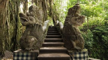 Picturesque Bali Premium Holiday Package