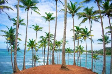Lively Sri Lanka tour