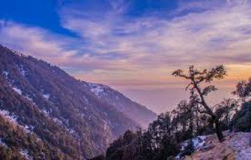 Breathtaking Triund Hill Trek