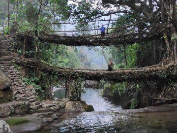 BEAUTIFUL  NORTH EAST WITH  KAZIRANGA NATIONAL PARK SHIILLONG  CHERRAPUNJI AND GUWAHATI WITH GUIDED TREK TO LIVING ROOTS BRIDGE