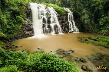 Tour package for Bangalore - Mysore - Ooty - Coorg - Bangalore for 05 nights 06 days