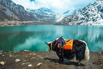 3N Gangtok 1N Lachung and 2N Darjeeling  6N 7D Tour Minimum 04 pax travelling together