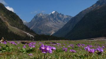 NORTH SIKKIM 3 DAYS FIXED DEPARTURE TRIP FROM GANGTOK @ Rs 6000/- Only