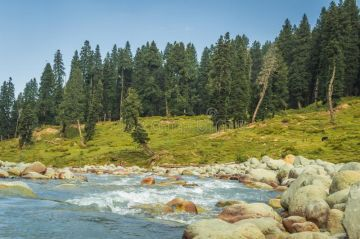Memerising Kashmir