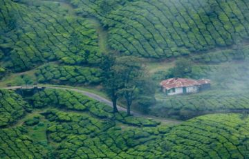 3NIGHTS 4DAYS MUNNAR ALLEPPEY TOUR PACKAGES