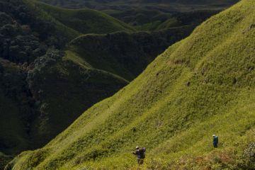 Summer Trek and Camp in Dzukou valley