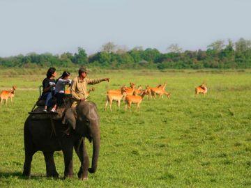 Kaziranga Safari with Shillong Tour