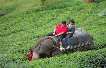 Beautiful Kerala - Best of 7 Destinations