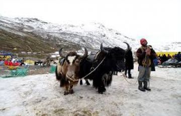Dharmshala-Kaza tour package