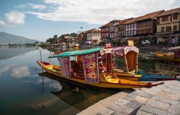 Tulip Festival Tour Kashmir