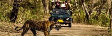 Jim Corbett with Jeep Safari tour package